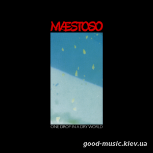 Woolly Wolstenholme's Maestoso, 2004 - One Drop in a Dry World